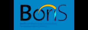 Boris Berufswahl-Siegel